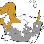 Dessin douche chien