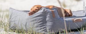 Panier grand chien plage